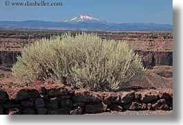 america, horizontal, mt jefferson, north america, oregon, scenics, shrubs, united states, photograph