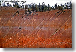 america, bryce, bryce canyon, canyons, horizontal, north america, scenics, united states, utah, western usa, photograph