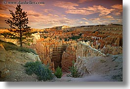 america, bryce canyon, clouds, horizontal, north america, scenics, trees, united states, utah, western usa, photograph