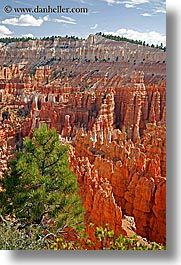 america, bryce canyon, clouds, north america, scenics, trees, united states, utah, vertical, western usa, photograph