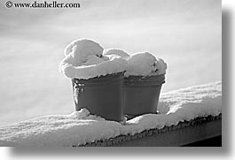america, black and white, horizontal, north america, park city, plants, pots, snow, united states, utah, western usa, photograph