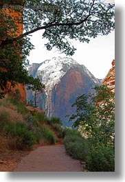 america, angels landing trail, cliffs, mountains, nature, north america, paths, united states, utah, vertical, western usa, zion, photograph