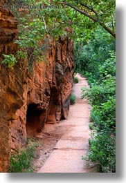 america, angels landing trail, canyons, nature, north america, paths, rocks, slot canyon, trees, united states, utah, vertical, walls, western usa, zion, photograph