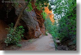 america, angels landing trail, canyons, horizontal, nature, north america, paths, rocks, slot canyon, trees, united states, utah, walls, western usa, zion, photograph