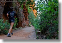 america, angels landing trail, hikers, horizontal, north america, paths, rocks, trees, united states, utah, walls, western usa, zion, photograph