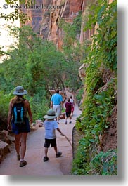 america, hikers, lush, nature, north america, people, trails, united states, utah, vertical, western usa, zion, photograph