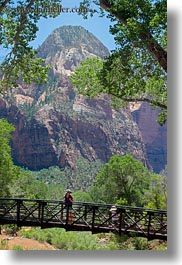 america, bridge, jack and jill, lush, mountains, nature, north america, people, united states, utah, vertical, western usa, zion, photograph