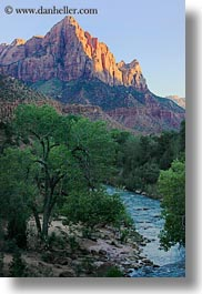 america, mountains, north america, rivers, united states, utah, vertical, virgin, virgin river, western usa, zion, photograph