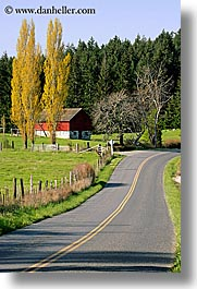aspens, orcas island, barn, washington, united states, red, road, yellow, photograph