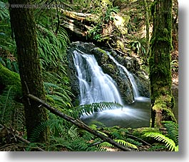 orcas island, woods, waterfalls, washington, united states, photograph