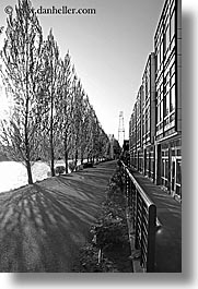 america, black and white, buildings, fremont, north america, pacific northwest, seattle, shadows, trees, united states, vertical, washington, western usa, photograph