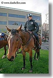 america, horses, north america, pacific northwest, people, policeman, seattle, united states, vertical, washington, western usa, photograph
