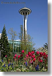 america, buildings, north america, pacific northwest, seattle, space needle, structures, towers, tulips, united states, vertical, washington, western usa, photograph