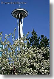 america, branches, buildings, flowers, nature, north america, pacific northwest, plants, seattle, space needle, structures, towers, trees, united states, vertical, washington, western usa, white, photograph