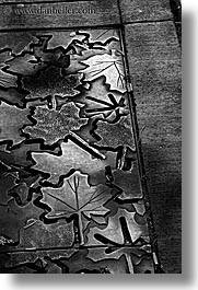 america, black and white, grates, leaves, north america, pacific northwest, seattle, streets, united states, vertical, washington, western usa, photograph