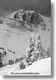 america, jackson hole, north america, scenics, snow, united states, vertical, winter, wyoming, photograph