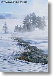 america, north america, snow, united states, vertical, winter, wyoming, yellowstone, photograph