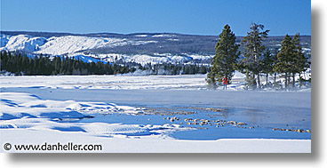 america, horizontal, north america, snow, trees, united states, winter, wyoming, yellowstone, photograph
