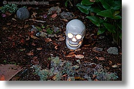 gardens, halloween, homes, horizontal, illuminated, long exposure, personal, skulls, photograph
