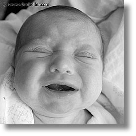 babies, baby face, black and white, boys, cry, infant, jacks, square format, photograph